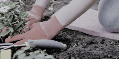 Gardening-DIY-Injury-and-Prevention